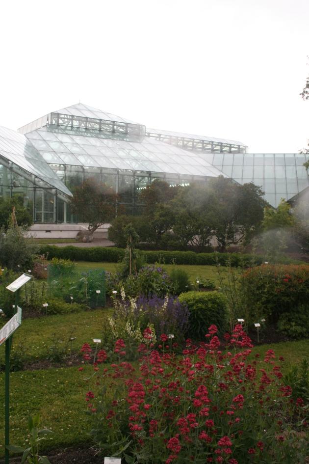 Edvard Andersons växthus