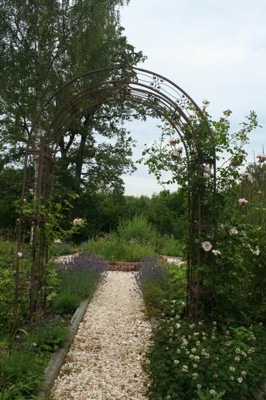 Rosportalen med New Dawn-rosor och som leder fram till örtagården.